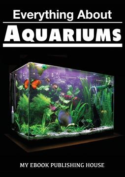 Picture of Everything About Aquariums